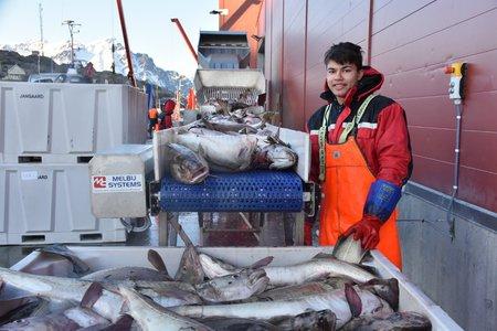 Работа на рыболовецком судне в Норвегии